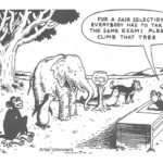 Revisiting Differentiated Instruction